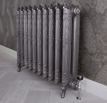 Carron dragonfly radiator